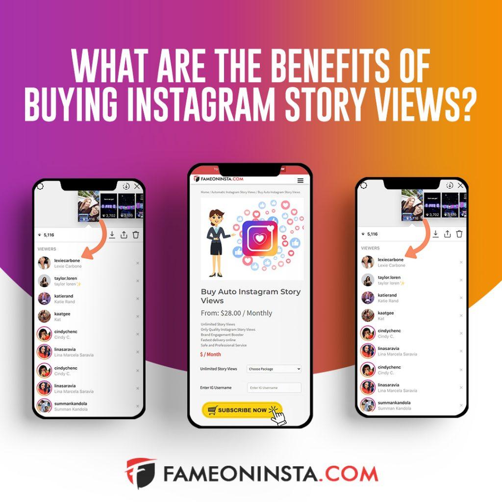 buy story views