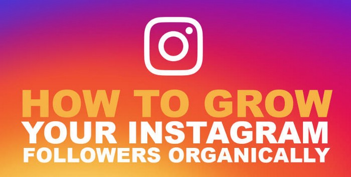 Easy Tactics To Grow Your Instagram Likes And Video Views